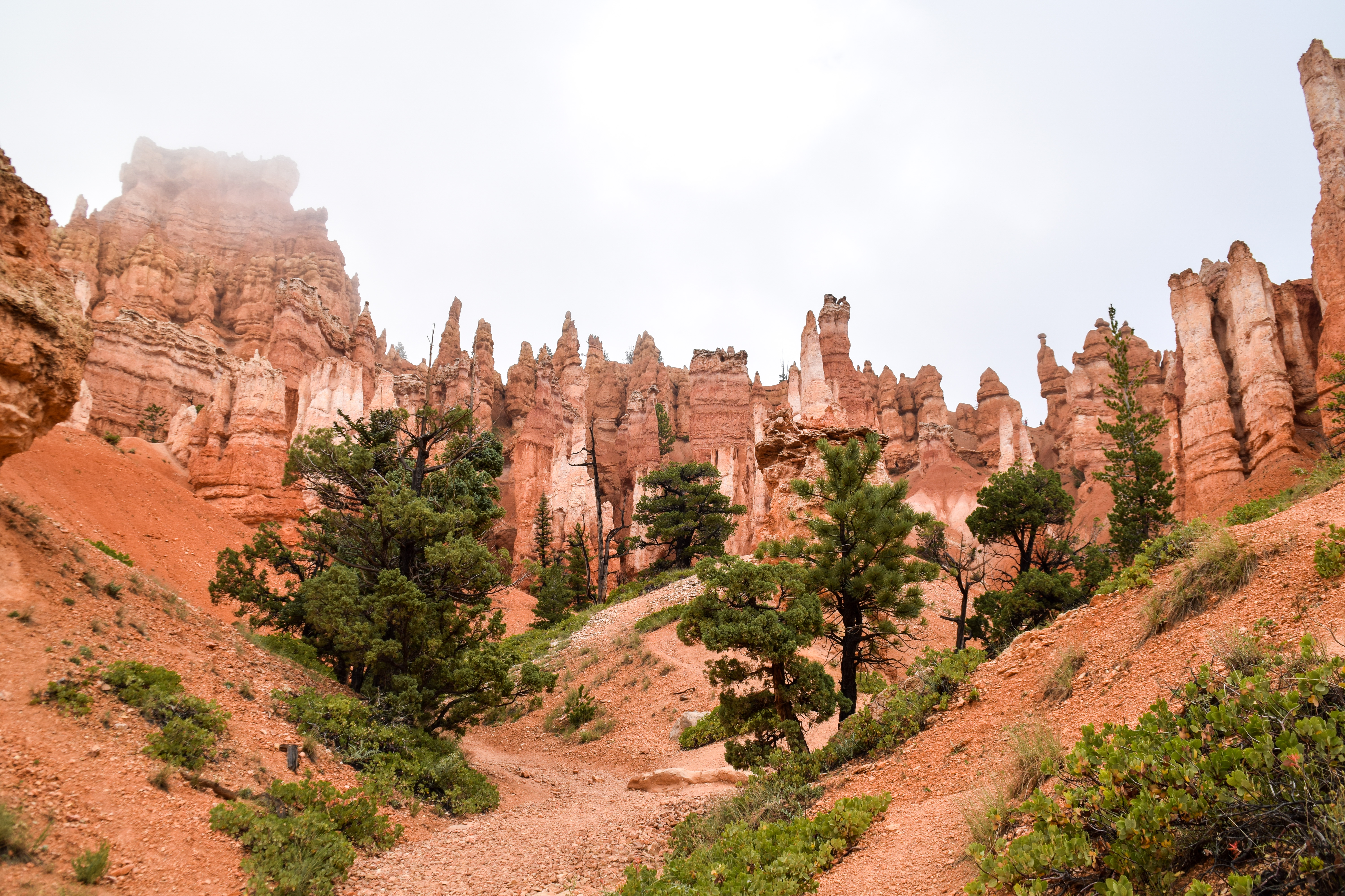 Zion d part vers le monde for Cabine vicino a bryce canyon